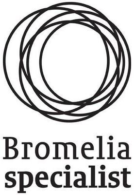 Logo Bromelia Specialist